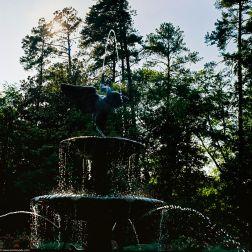 Fountain in to Sun 2