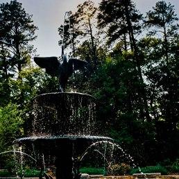 Fountain into Sun 1